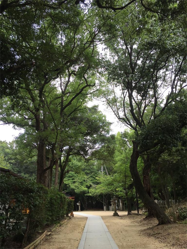f:id:r_huku_huku:20170716214040j:image