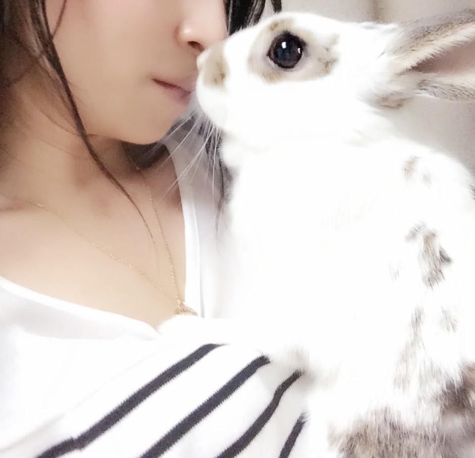 うさぎさんとキス