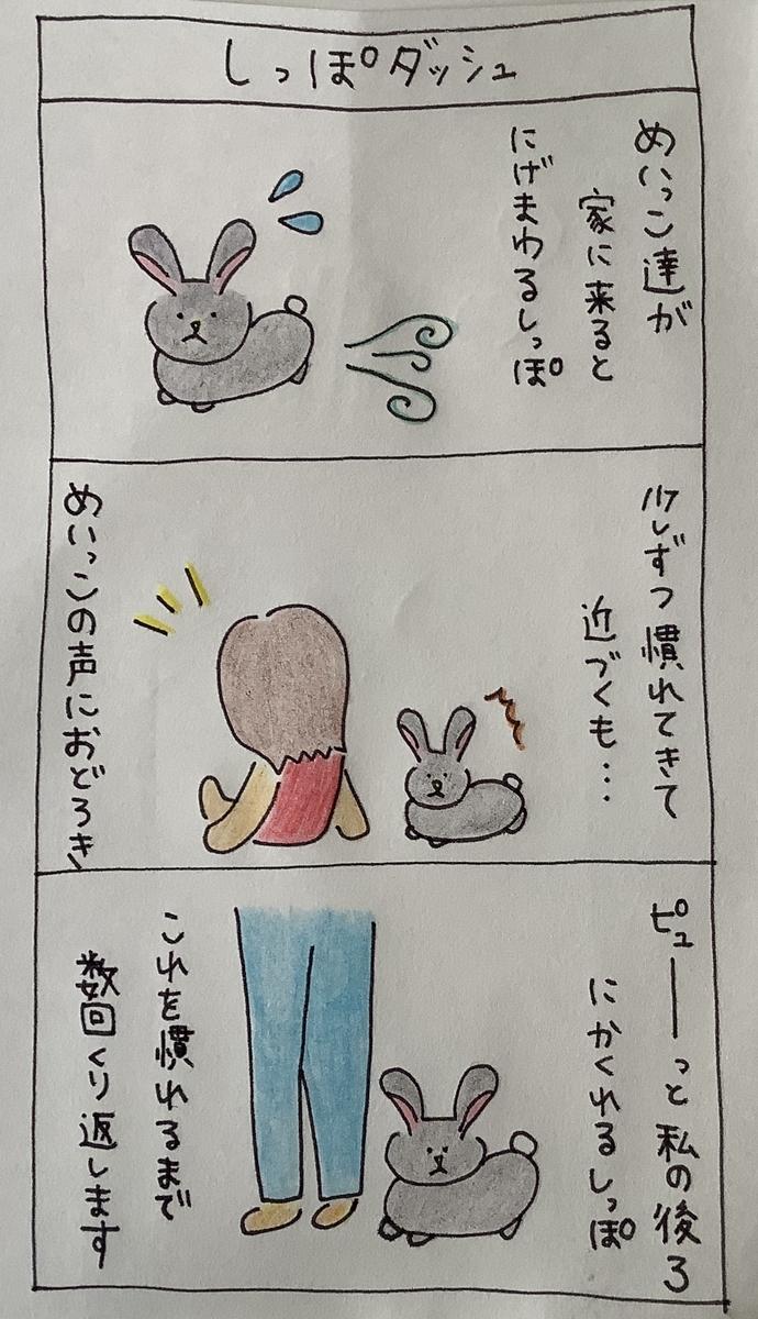 f:id:rabbittail-ko:20200509144413j:plain