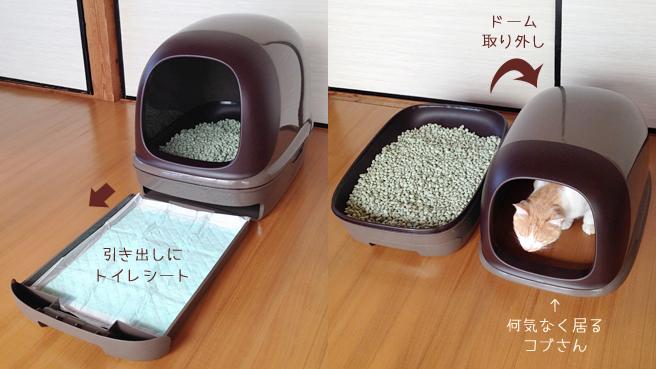 neko-toilet-3