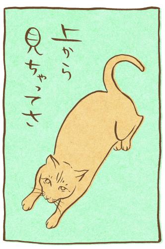 fudeneko-tanabata-9