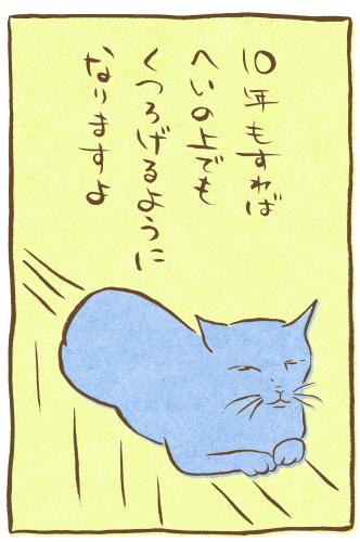 fudeneko-tanabata-13