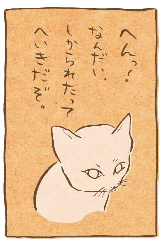 fudeneko-tanabata-12