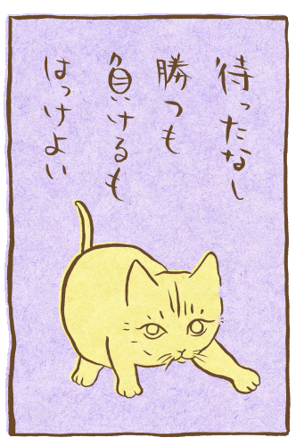 fudeneko-tanabata-11