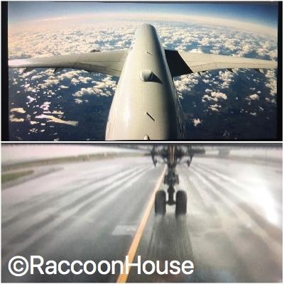 f:id:raccoonhouse:20181018205657p:plain