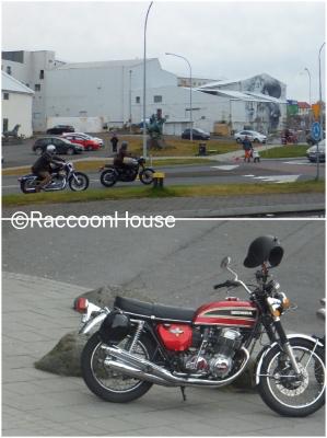 f:id:raccoonhouse:20181114200705p:plain