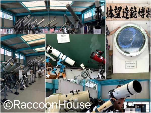 f:id:raccoonhouse:20190814200621p:plain