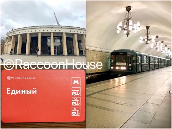 f:id:raccoonhouse:20191105210152p:plain