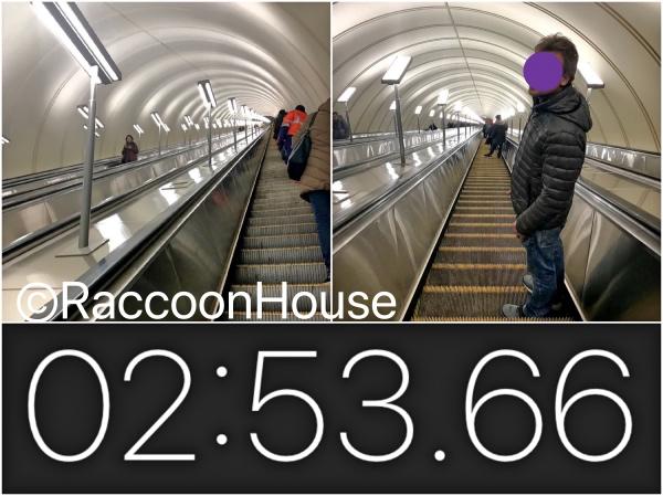 f:id:raccoonhouse:20191109212747p:plain