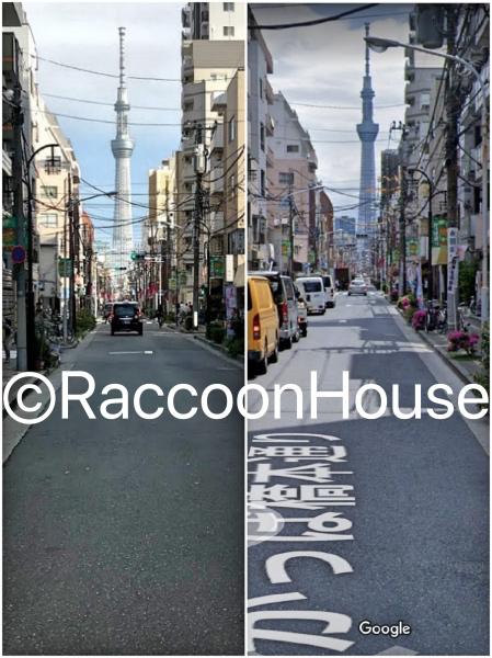 f:id:raccoonhouse:20191120195613p:plain