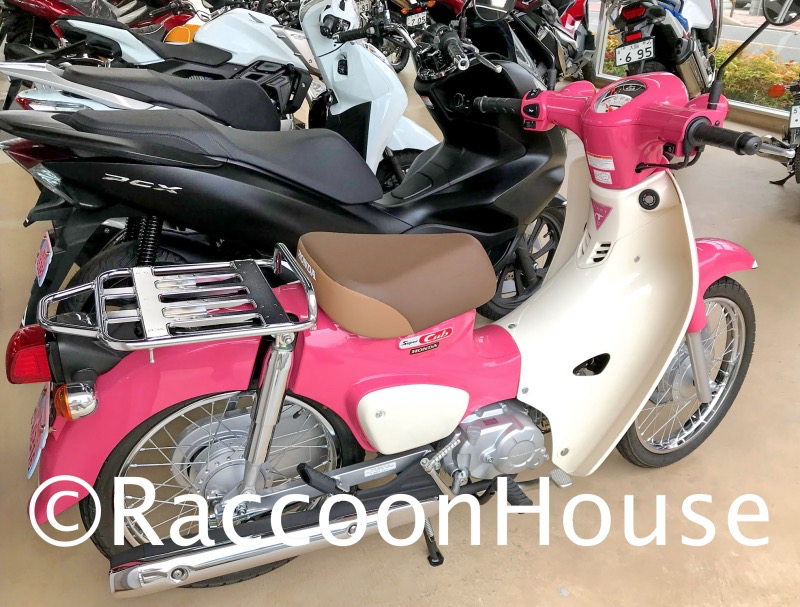f:id:raccoonhouse:20200609204945p:plain