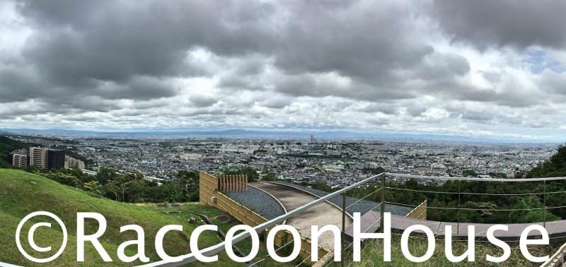 f:id:raccoonhouse:20200613202145p:plain