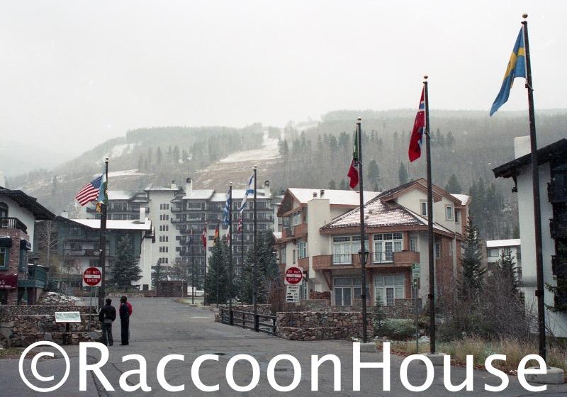 f:id:raccoonhouse:20200729180615p:plain