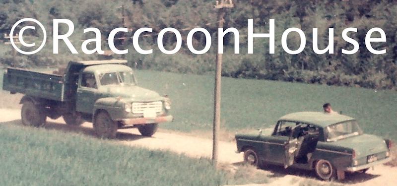 f:id:raccoonhouse:20200903190409p:plain