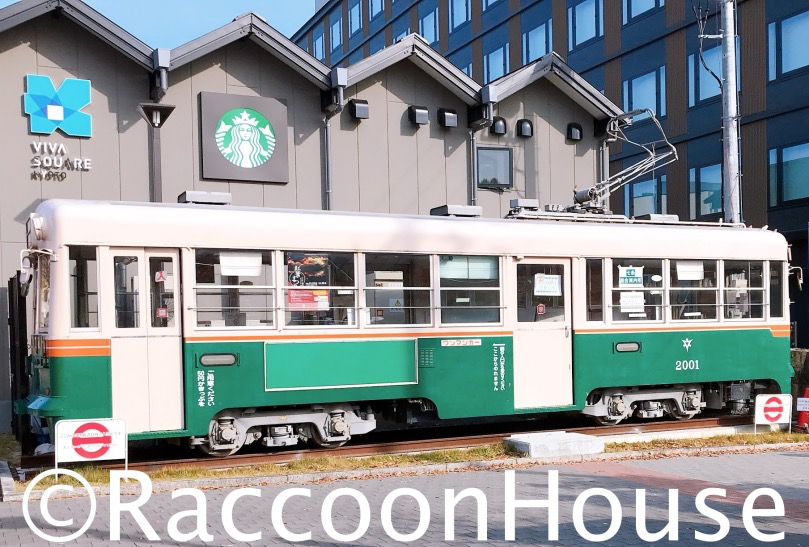 f:id:raccoonhouse:20201127193139p:plain