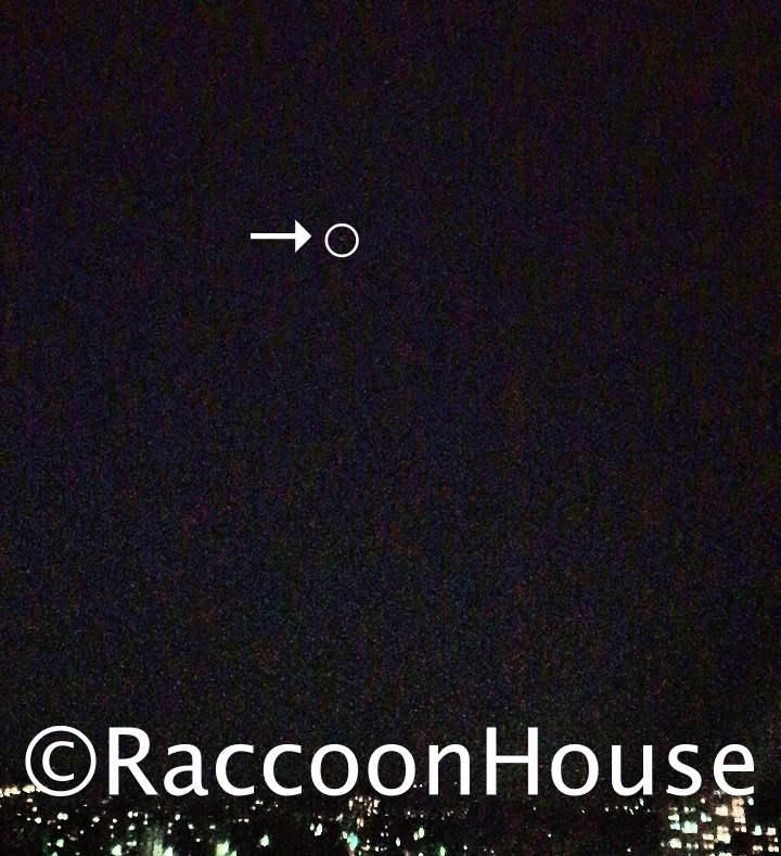 f:id:raccoonhouse:20210121192052p:plain