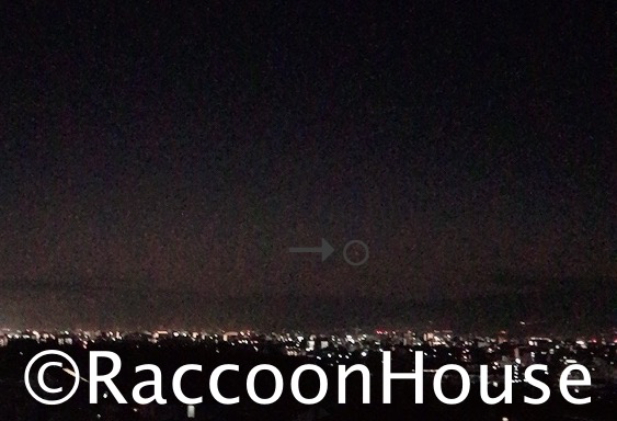 f:id:raccoonhouse:20210123194815p:plain