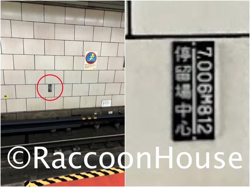 f:id:raccoonhouse:20210215204903p:plain