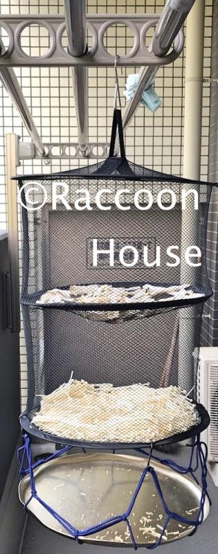 f:id:raccoonhouse:20210503172204p:plain