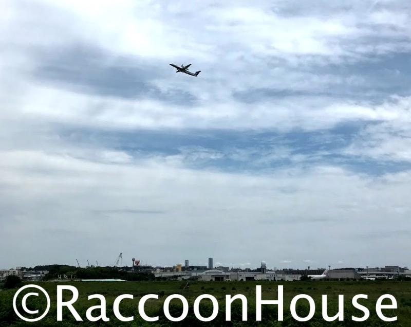 f:id:raccoonhouse:20210606172651p:plain