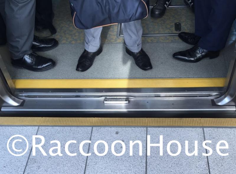 f:id:raccoonhouse:20210610195943p:plain