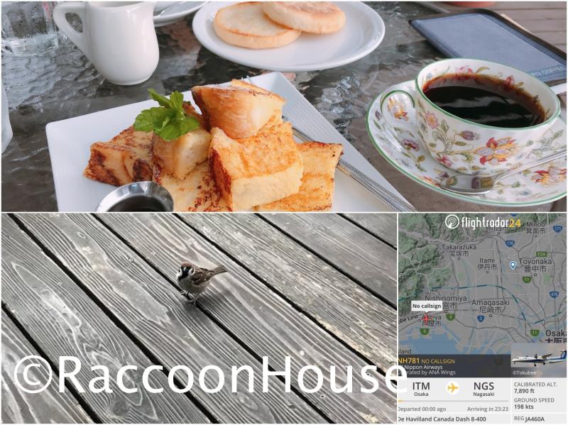 f:id:raccoonhouse:20210612165522p:plain