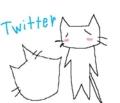 twitter猫
