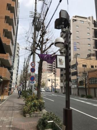 f:id:rai_chan:20180401114511j:image