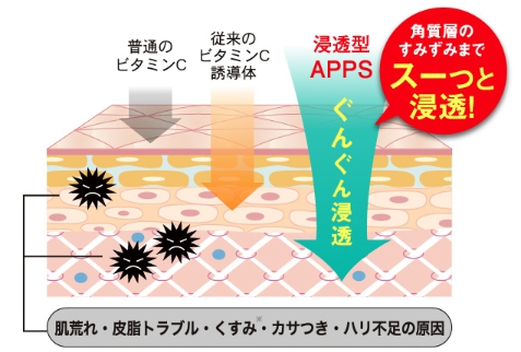 f:id:raido481025:20180519175743j:plain