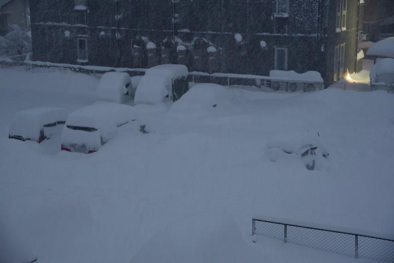 雪に埋もれる車 翌朝