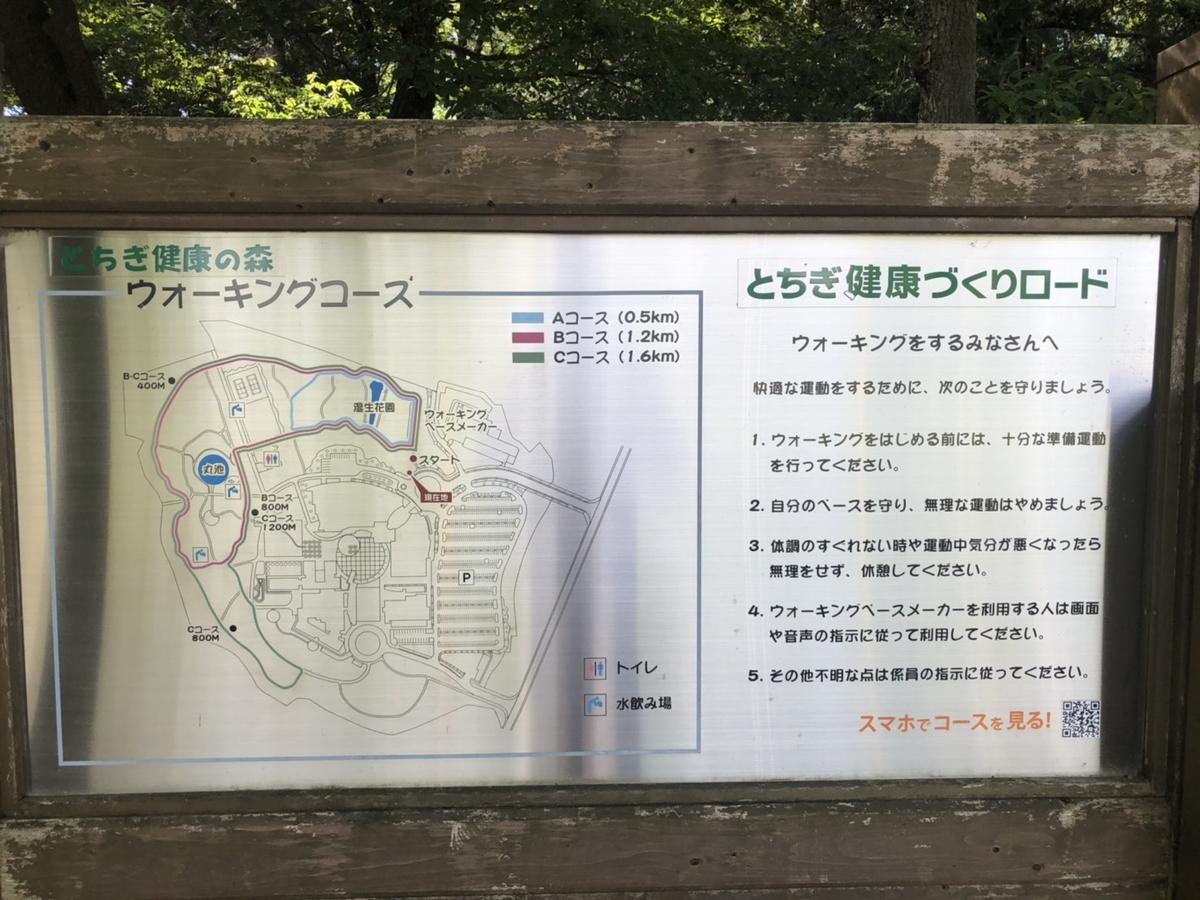 f:id:rail-rate:20190830221204j:plain