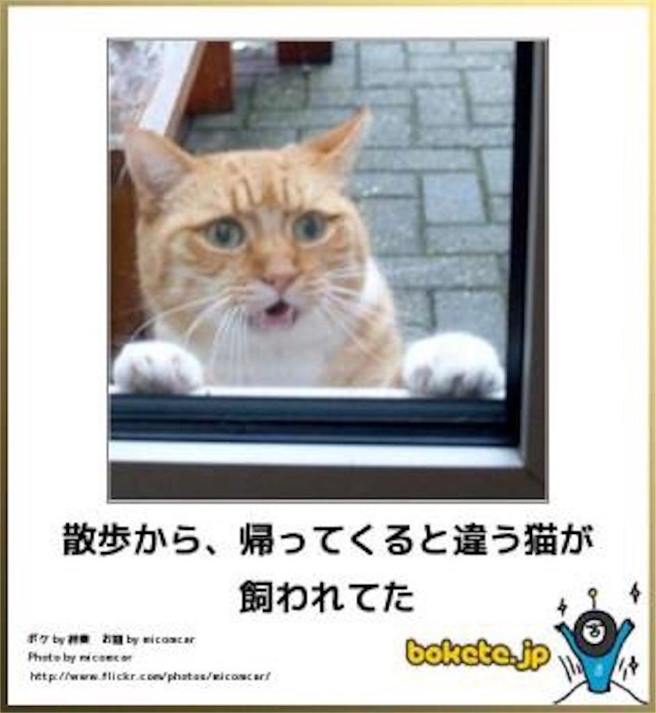 f:id:raimuaika:20170422005558j:image
