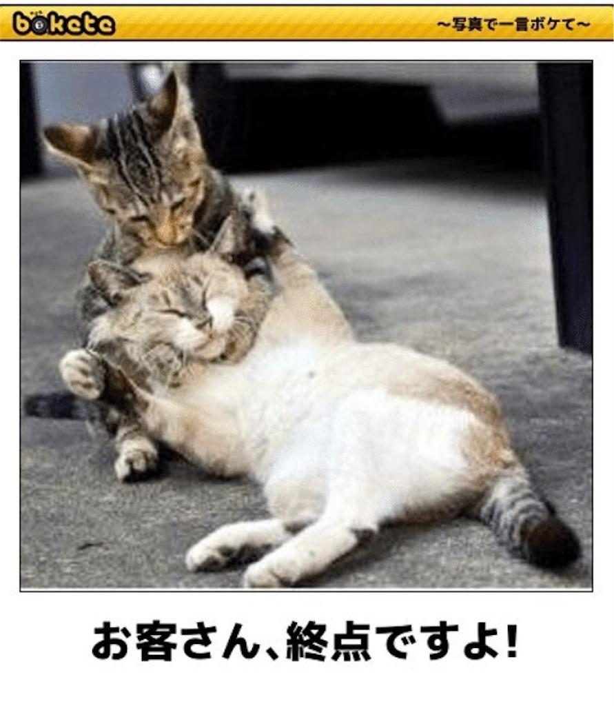 f:id:raimuaika:20170424231423j:image