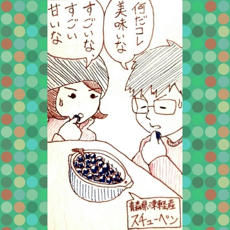 f:id:rainbow_hamada:20170416173819j:plain