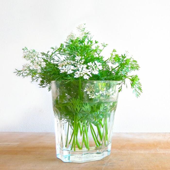 f:id:rainbowflowers:20180418175928j:plain