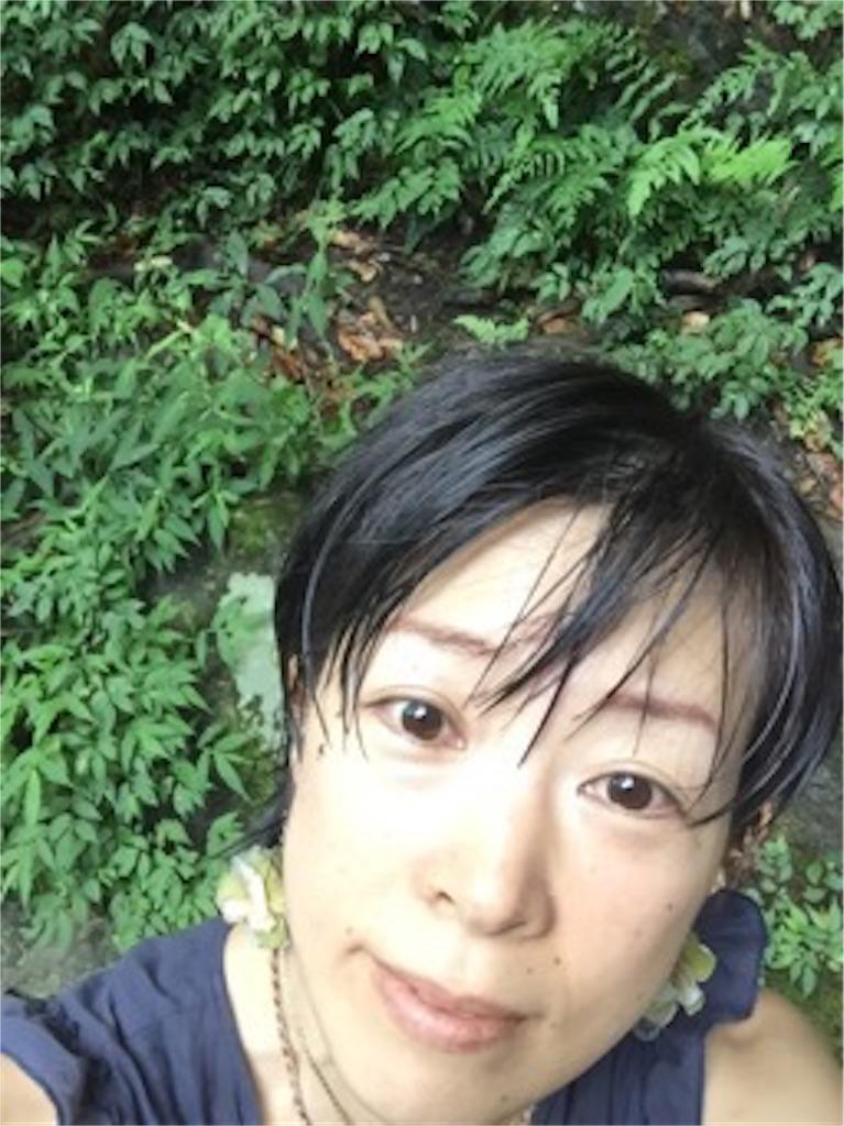 f:id:rainbowmoon808:20170524002112j:image