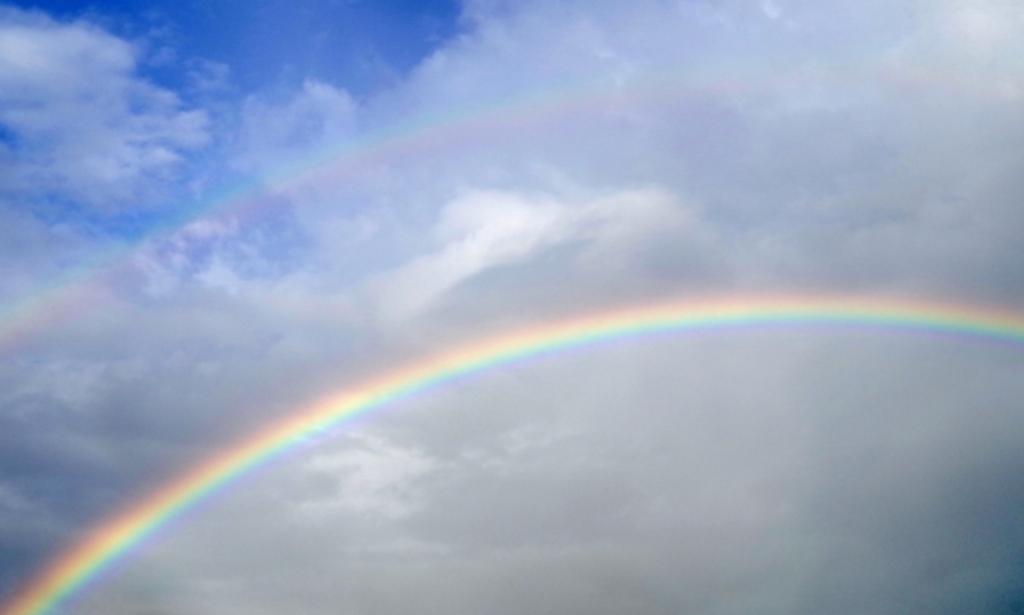 f:id:rainbowshow:20161125140019j:plain