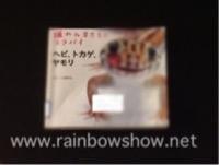 f:id:rainbowshow:20190518214318j:plain