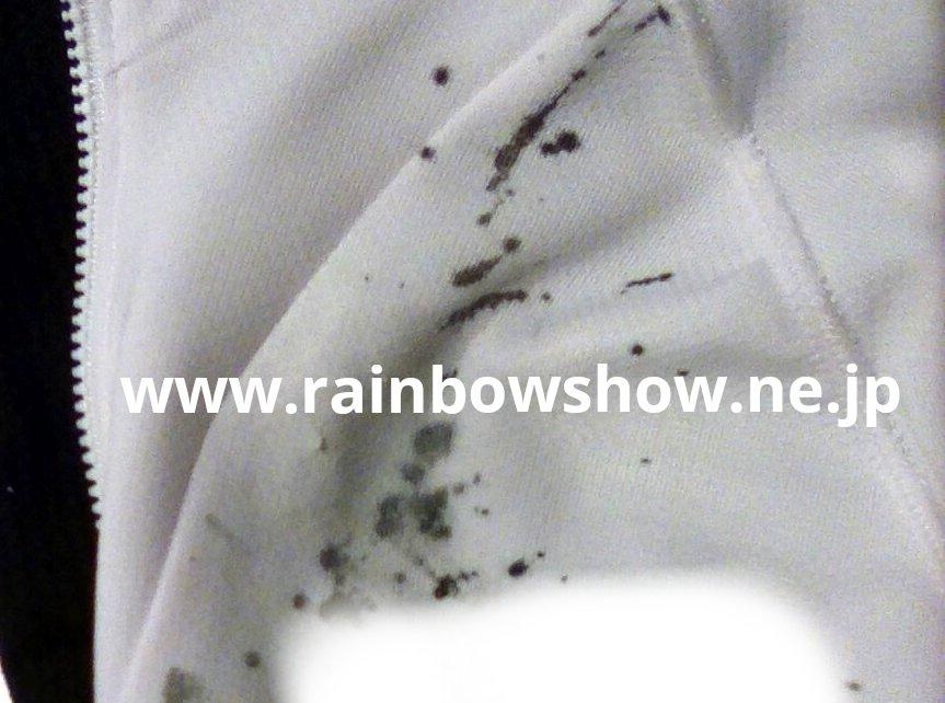 f:id:rainbowshow:20210523181908j:plain