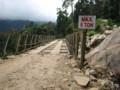 This kind of bridge is common
