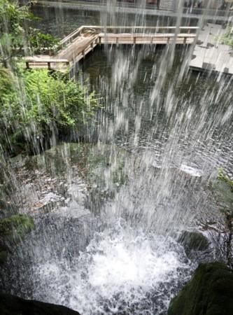f:id:rainfall:20160802154551j:image