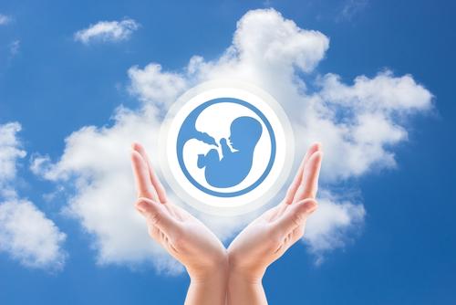 妊娠8週目の赤ちゃんの様子