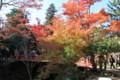 [観光]宮島の紅葉