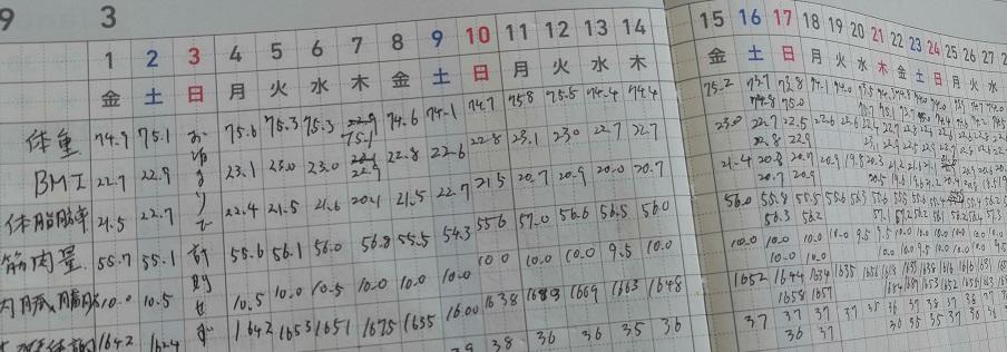 3月の体重記録画像