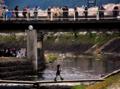 「京都新聞写真コンテスト」 花見を狙うカメラマン