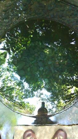 f:id:rakkyodo:20110519152016j:image