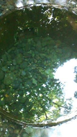f:id:rakkyodo:20110519152050j:image