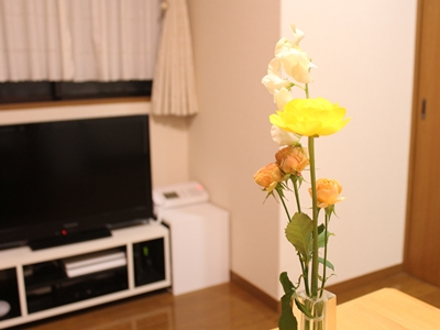 f:id:raku-kurashi:20200212130619j:plain