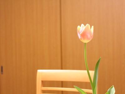 f:id:raku-kurashi:20200302120334j:plain