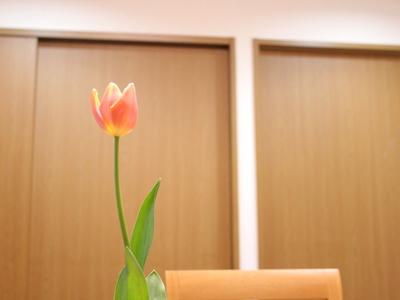 f:id:raku-kurashi:20200307071738j:plain